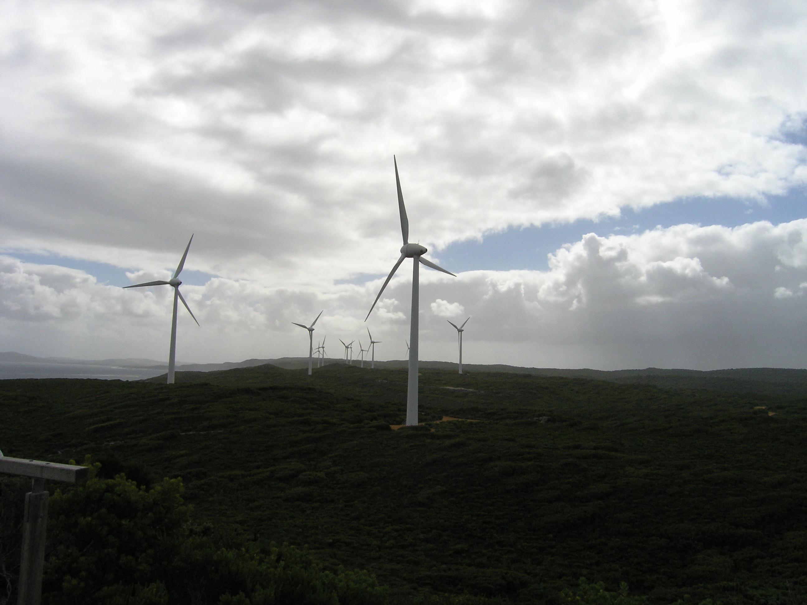 Albany wind turbines