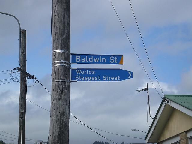 world's steepest street